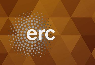 ERC mini