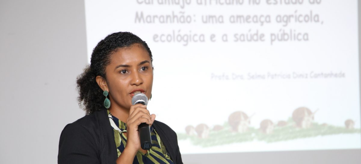 Grupo Técnico discute estratégias e ações de controle do caramujo africano