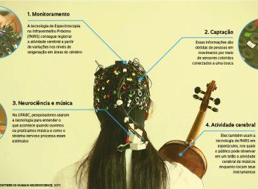 Novas formas de conhecer o cérebro