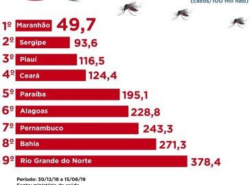 Maranhão registra menor incidência de casos de dengue do Nordeste