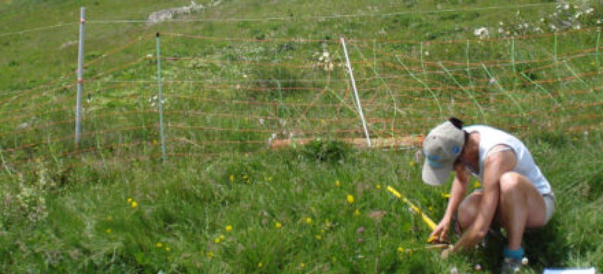 Confap e BiodivERsA lançam chamada internacional sobre biodiversidade e mudanças climáticas