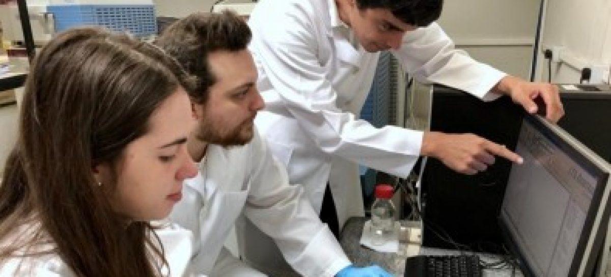 Zika inibe proliferação de células do câncer de próstata