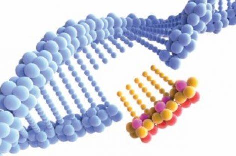 Ferramenta que permite editar genes pode ajudar a barrar infecção pelo novo coronavírus