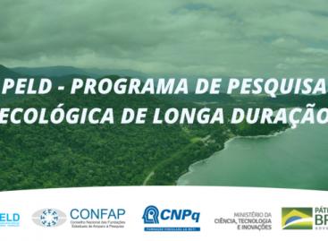 Confap, CNPq e MCTI lançam Chamada do Programa de Pesquisa Ecológica de Longa Duração – PELD