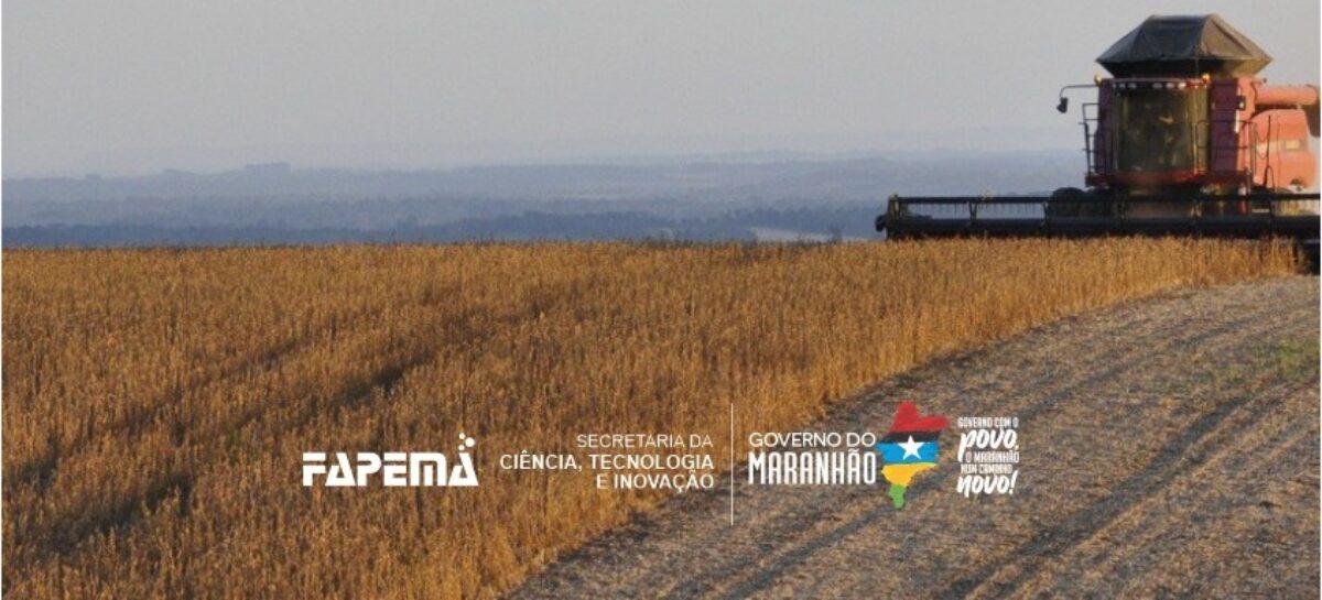 Estudo analisa questão agrária no sul do Maranhão