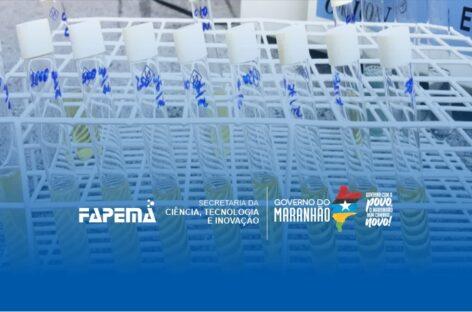 Pesquisa apoiada pela Fapema estuda potenciais biológicos de óleos essenciais